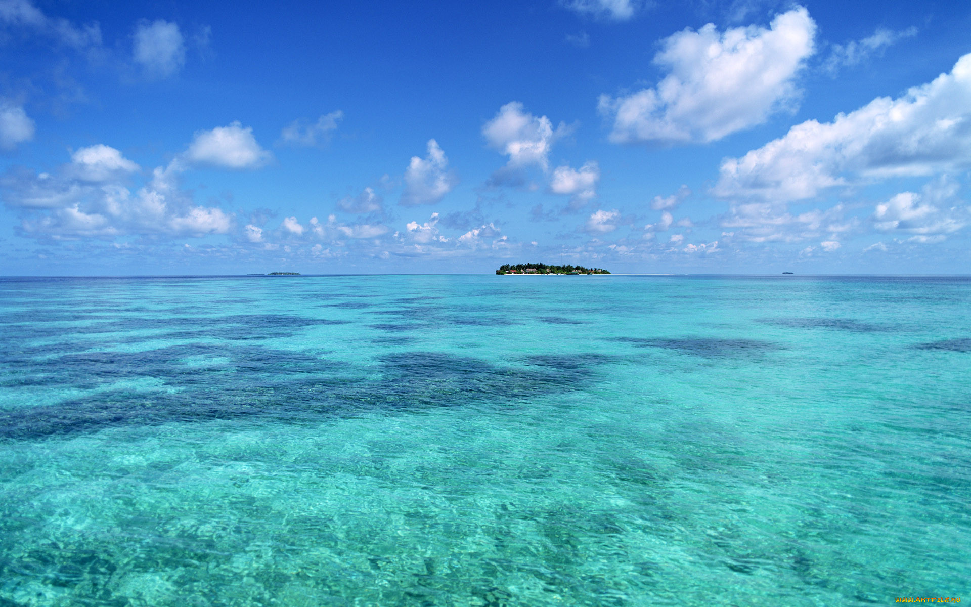 бирюзовое море фото который посыпала